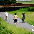 多摩川の遊歩道。その二